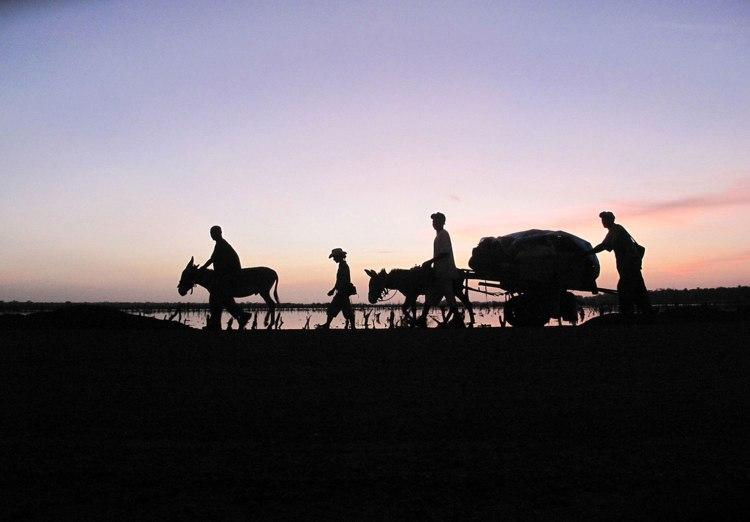 'Dawn over Kalaji Bridge' © Jason Florio – from 'A Short Walk in the Gambian Bush – 930km African Odyssey'