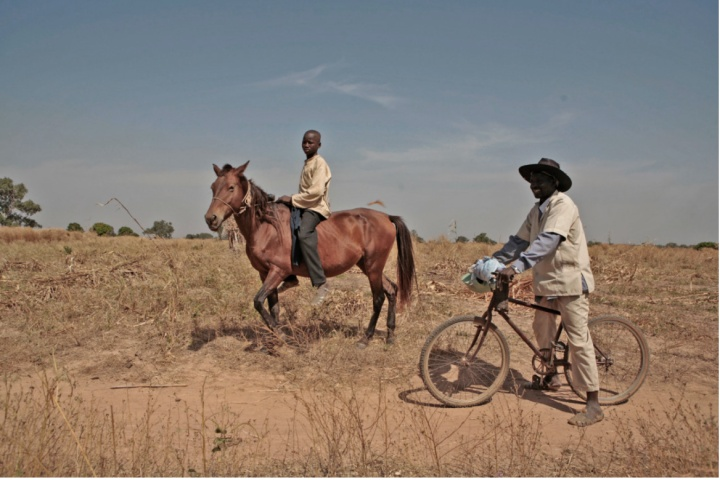 Image: ©Jason Florio-2009 Gambian boy on his horse & farmer, on his bicycle, near the town of Basse, The Gambia, West Africa