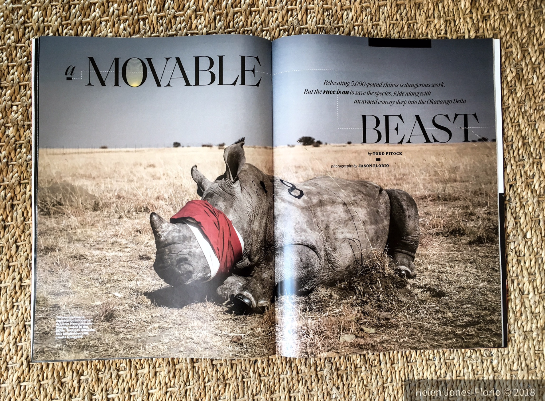 'Movable Beast' Smithsonian Magazine, June 2018 – image ©Jason Florio
