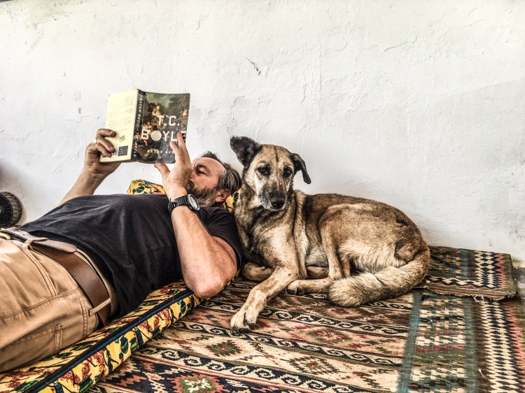 Gambia dogs - a man reads a book, lying on a Persian carpet, with a dog lying next to him. Image © Helen Jones-Florio