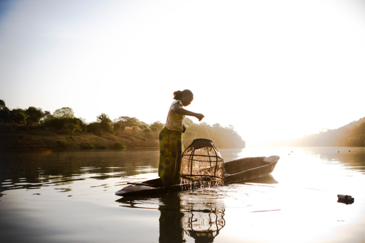 A woman checks her traps on the River Gambia, Senegal, in the early hours of the morning, West Africa. Image ©Jason Florio